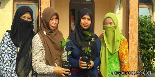 Pembagian Bibit Cabai Warnai Peringatan Hari Kartini Lajnah Imaillah Ciherang